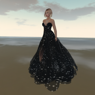 Paris METRO Couture_ Dotted Line Gown with Appliers+Shoes