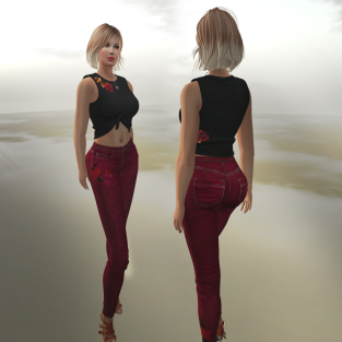 Paris METRO Couture_ Straight Leg Jeans & Red Rose Crop Top